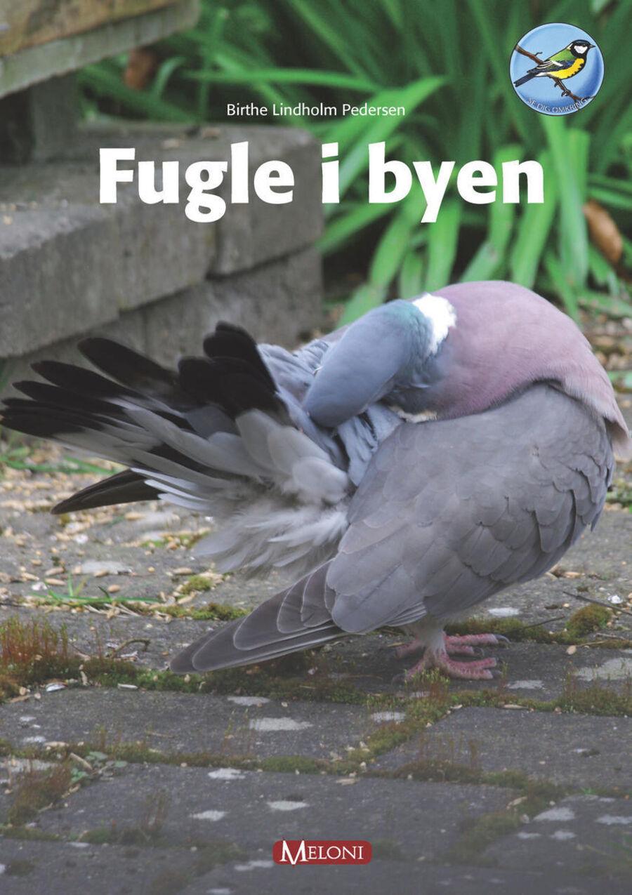 Fugle i byen
