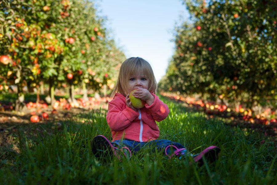 Pige med æble